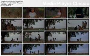 IVDS2003-MS-2shake.mp4_thumbs_[2016.03.12_10.30.52]